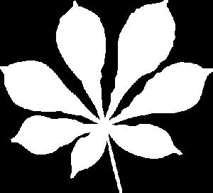 C34 Logo