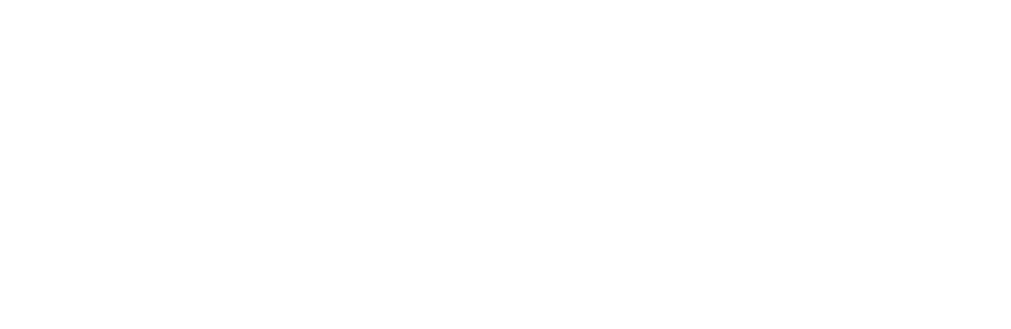 CASA W Logo